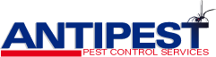 Antipest Pest Control Services